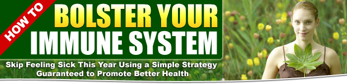 Bolster Your Immune System