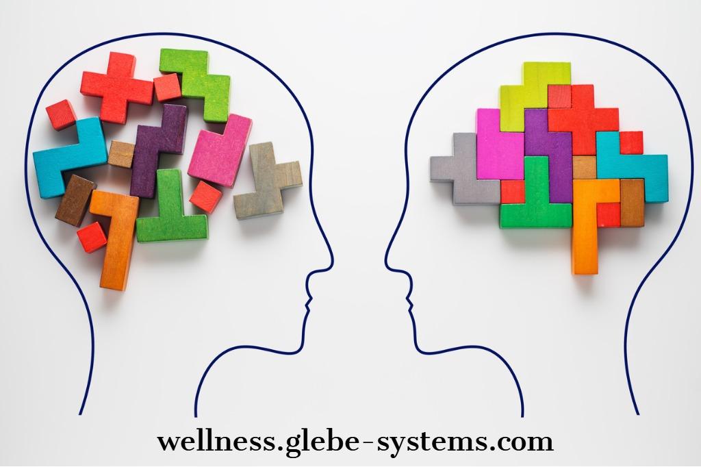 ketogenic diet - brain function